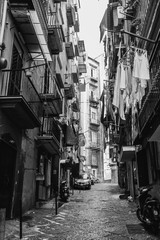 Garden Poster Napels Napoli