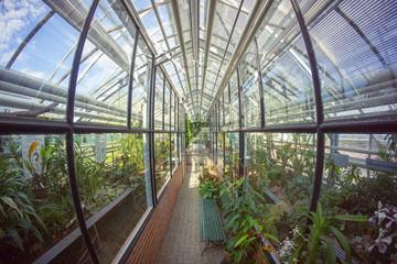 Botanical Garden Greifswald