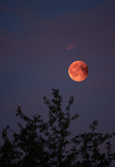 View of Total Lunar Eclipse bloodmoon on July 28 2018 in Germany