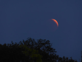 Lunar Eclipse / Blood Moon