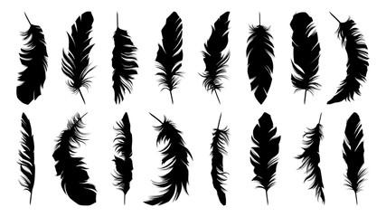 Set of black feathers on white background Fotoväggar