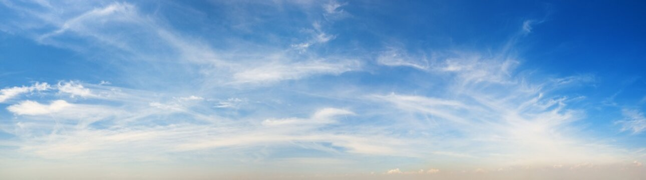 Sunny sky panorama