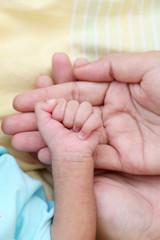 Newborn little hand hold by parent hand