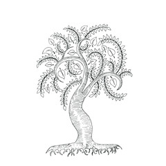 Hand-drawn vector illustration of a cartoon tree. Isolated on white background.