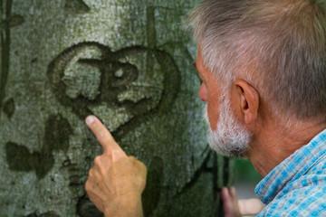 Baumherz weckt Erinnerungen bei Rentner