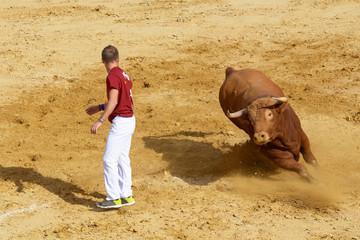 Competición con toros bravos en España