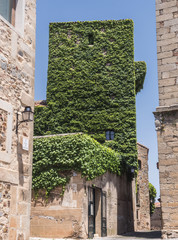 Foto op Textielframe Artistiek mon. House of the walls-Saavedra and tower of Sande, is Gothic, of the 14th century, rebuilt in the 15th century, square of San Mateo, Caceres, Spain
