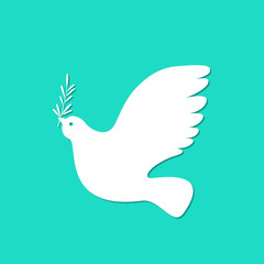 International Peace Day. White dove with olive branch.
