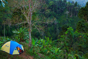 Young woman, little kid look from camping tent at scenic rainforest view. Hiking activity, travel adventure with child, exploring tropical jungle nature on family summer vacation, weekend walking tour