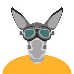 donkey in glasses face head vector illustration flat style
