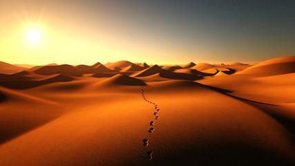 footprints on the sand dunes