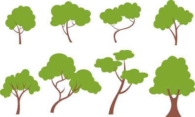 collection of trees and leaves