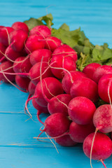 Bunches of radish sold on farmer's market. Close up. Blue wood background.