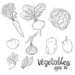 Hand Drawn Vegetables Set. Collection of food sketch. Vector illustration