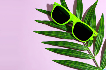Bright green sunglasses laying on a silk palm front on a pink background. Hard shadows and copy space
