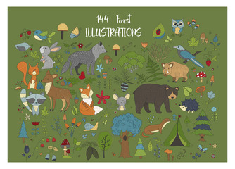Big set of hand drawn forest illustraitions with color cartoon animals on a green background.