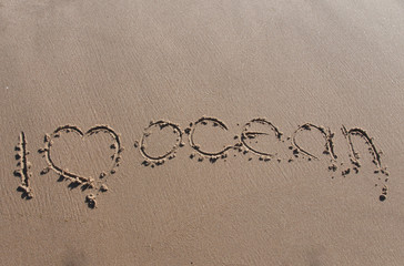 the inscription on sand i love the ocean