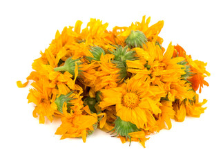 Dried calendula flowers isolated on white background. Medicinal herbs.