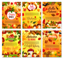 Hello Autumn seasonal vector greeting cards