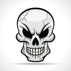 Vector skull on white background