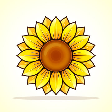 Vector yellow sunflower icon design