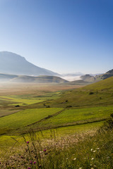 View of Castelluccio di Norcia (Umbria) at dawn, with mist, big meadows and totally empty blue sky