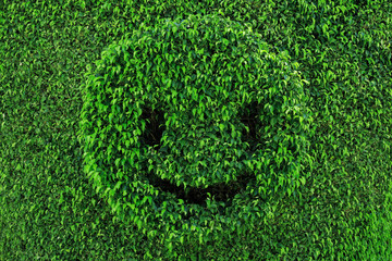 Art topiary in shape of smiling face green summer background.
