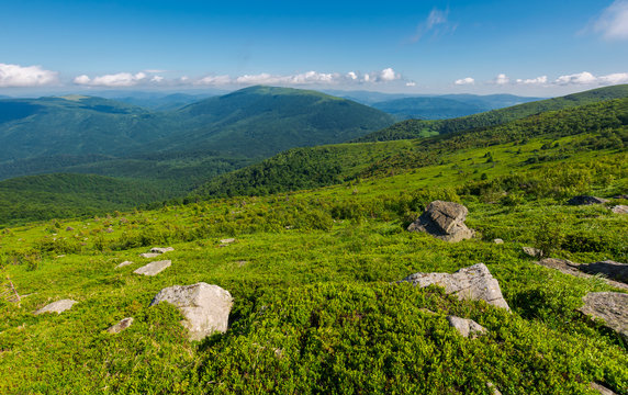 beautiful summer landscape in mountains. green grassy hillside and blue mountains in the distance. stunning  nature background