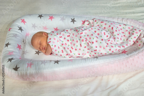 Newborn Baby Sleeping Wrapped In Blanket Cute Little Newborn Baby