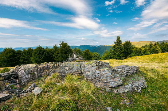 rocky formation on a forested hillside. beautiful summer landscape in mountains. gorgeous sky with high fluffy clouds