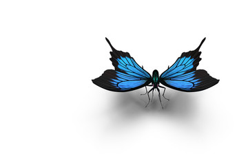 The Blue Morpho Butterfly . 3D rendering.