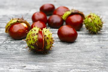 Kastanien im Herbst als Arzeneimittel, Heilmittel, Arzenei - Alternativmedizin