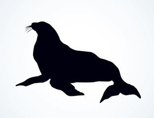 Seal. Vector drawing
