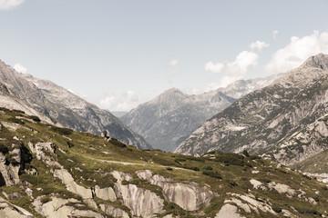Panorama dans les Alpes suisses