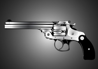 revolver smith and wesson 45