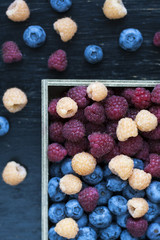 Fresh flavored blueberries and raspberries like a background in dark colors