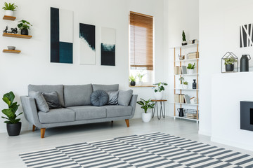 Black and white posters above grey couch in living room interior with patterned carpet. Real photo