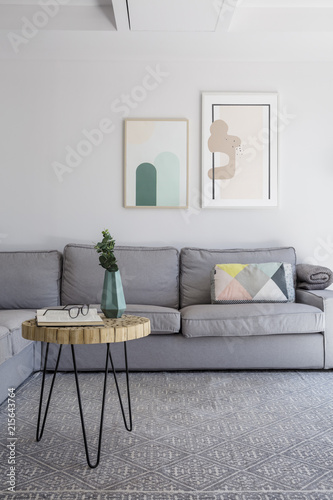 Plant on table on grey carpet in living room interior with ...