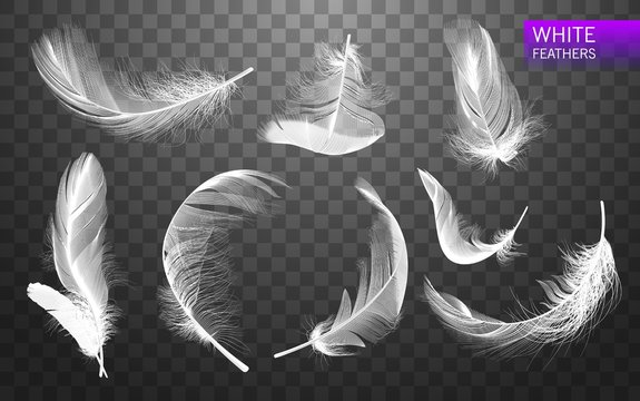 Set of isolated falling white fluffy twirled feathers on transparent background in realistic style. Vector Illustration