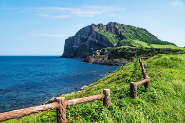Grassfields and fence with view over ocean and Ilchulbong in the background, Seongsan, Jeju Island, South Korea