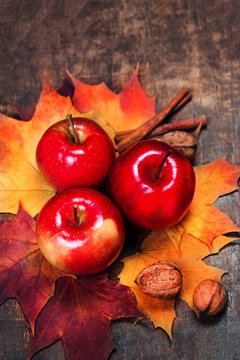 Harvest Background with red ripe apples and marple leaves on wooden table with copy space. Thanksgiving day or seasonal autumnal concept