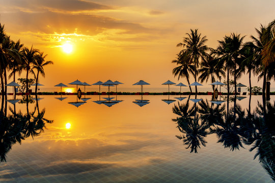 coconut trees and infinity swimming pool at a luxurious tropical beachfront hotel resort, sunset