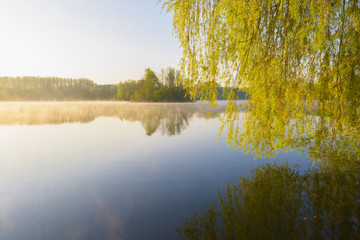 Lake and Trees in Early Morning Light, Lake Erlensee, Hanau, Germany