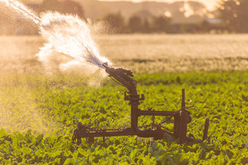 Irrigation sprinkler on farmland during severe drought