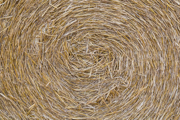 A close-up of a straw bale