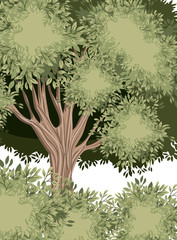 forest scene painted watercolor style vector illustration design