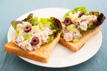Close-up of toasted bread with fish spread