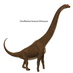 Giraffatitan Dinosaur Side Profile with Font - Giraffatitan was a herbivorous sauropod dinosaur that lived in Africa during the Jurassic Period.