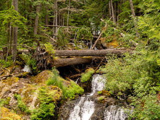 Waterfalls in Olympic National Park Washington – High resolution photo of Waterfalls Olympic National Park Washington hidden falls gorgeous mountains in summer