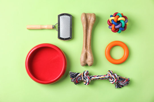 Flat lay composition with accessories for dog on color background. Pet care
